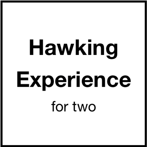 Hawking Experience (for 2)