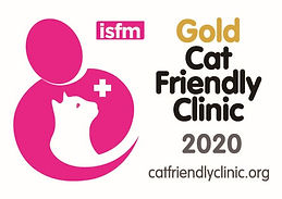 CFC Gold logo for clinics 2020 (1).jpg