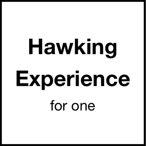 Hawking Experience (for 1)