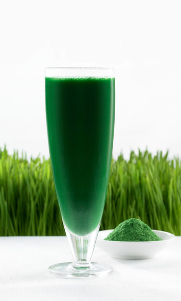 Wheat Grass Juice - Super Sprout