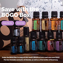 2021 03 BOGO BOX Photo.jpg