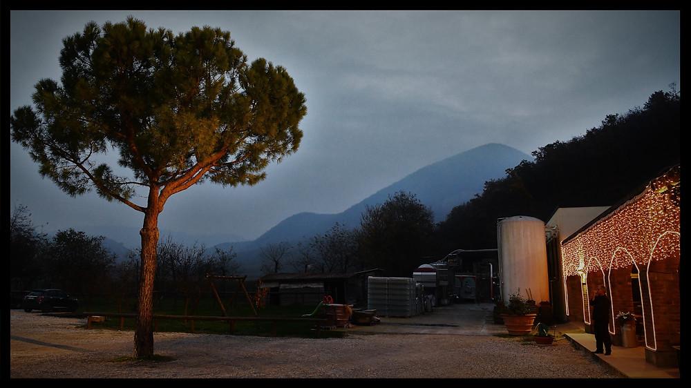 Cà Bianca - Colli Euganei - Padova, Italy