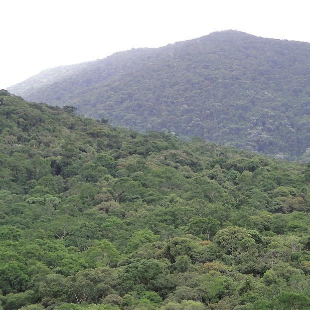 6. Serra do Itaberaba, Pico do Gil. O ma