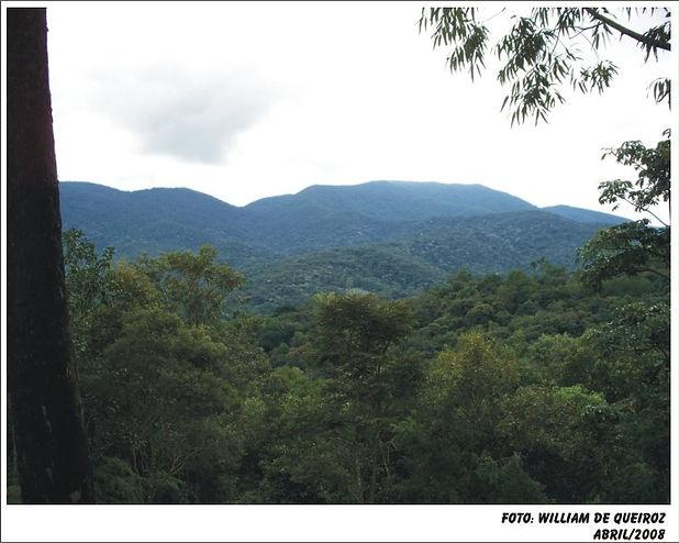 60. Morro Grande, 2008. Geográfo William