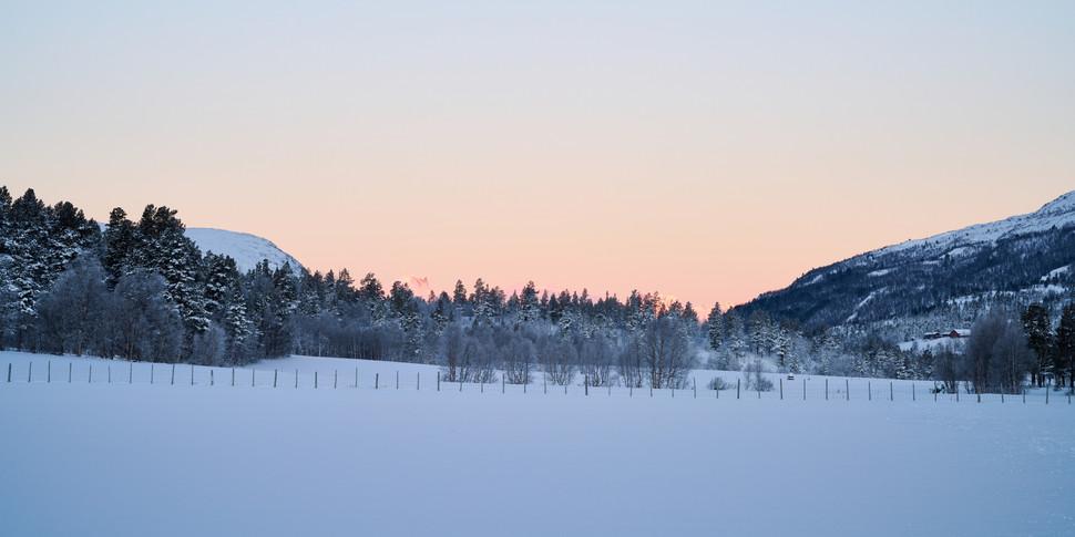 Vinter solnedgang
