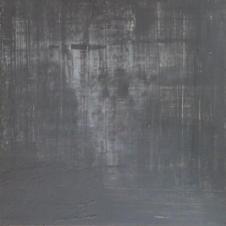 Schwarz 2, 2014