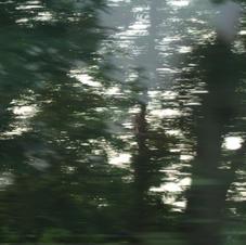 Trübung 13, 2009