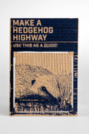 Hedgehog-highway.jpg