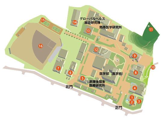 20200415sakamoto.jpg