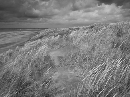 Dune................