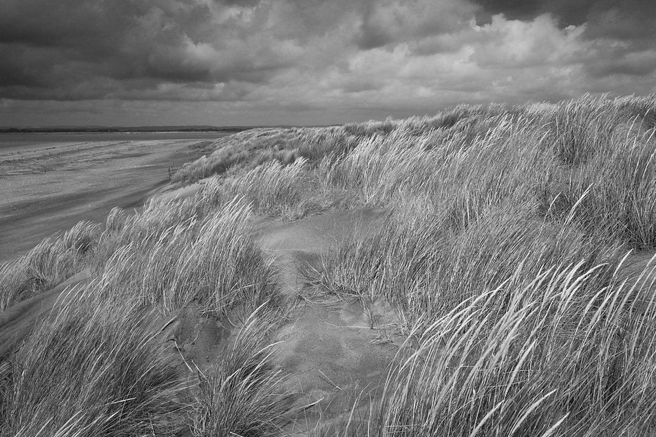 Dune©TonyWainwrightPhotography_(1_of_1).