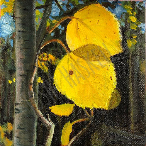 "Aspen 3 - oil on canvas - 4"" x 4"""