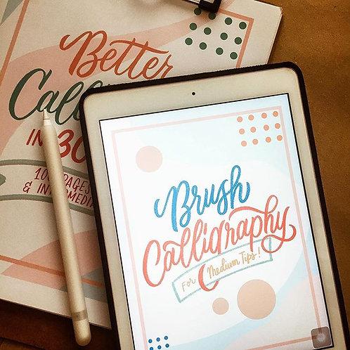 Printable Workbook # 4 Brush Calligraphy Workbook