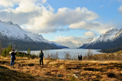 Discover the Fjords of Kvaløya