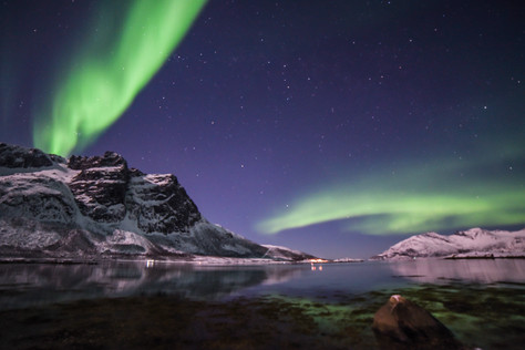 Aurora Borealis over Grøtfjord, near Tromsø in Norway. Picture takedn on a northern light chase with The Green Adventure.