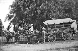 Ambulance wagon presented for service in South Africa, 1900