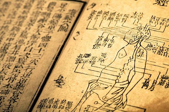 Première année du Cycle fondamental de  Médecine Traditionnelle Chinoise (zhōng yī 中医)