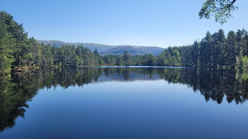 Clear blue sky, loch, pine forest and mountains