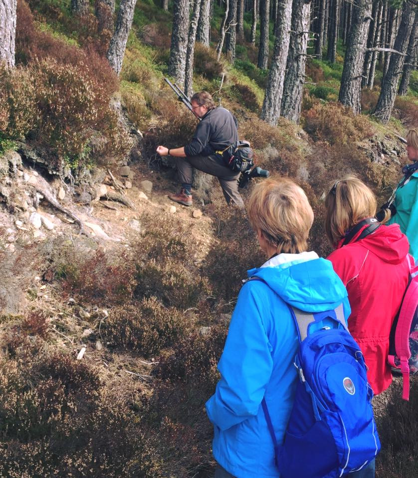 Students and teacher looking for signs of wildlife