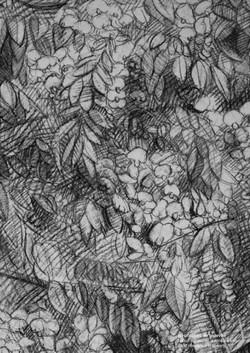 juandenubes book dessin-PABLO ok_Page_53