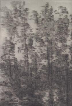 gravures juandenubes -PABLO_Page_25