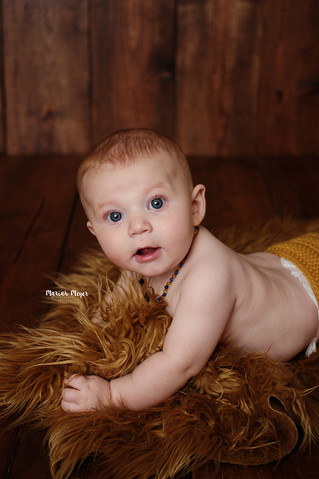 6 Month Milestone | Manitowoc Childrens Photographer