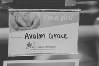 Avalon | Fresh 48 Session