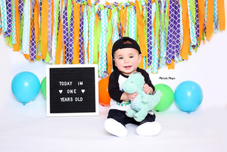 One Year | Dinosaur | Cake Smash | Manitowoc Childrens Photographer