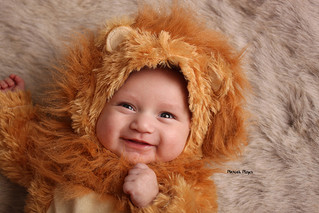 Roar! | Halloween Mini | Manitowoc Childrens Photographer