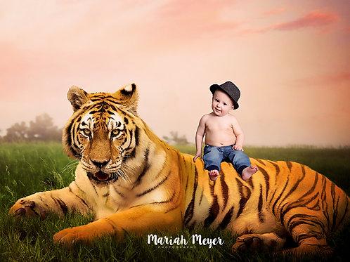 Tiger Composite