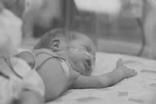 Baby Olivia | NICU Session
