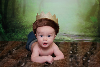 I'll Eat You Up I Love You So | Logan 3 & 4 Months | Manitowoc Childrens Photographer
