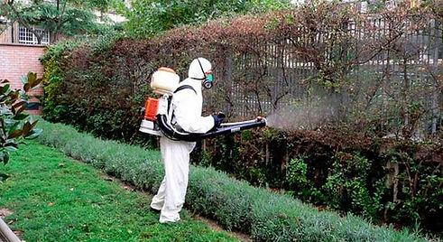 tratamientos fitosanitarios en Mallorca.