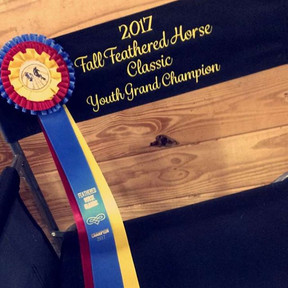 Youth Grand Champion