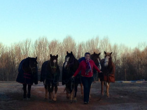 Flintrock Farm!