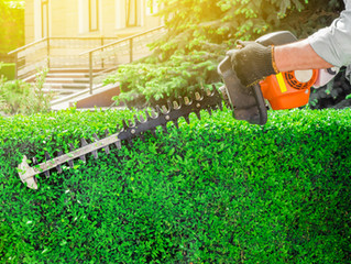 5 Business-Boosting Perks of Hiring a Commercial Landscaping Company
