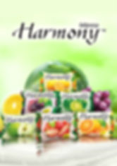 HarmonyPosterA3 resized.jpg