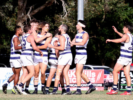 R10 PREVIEW: CATS & LIONS TO DO BATTLE IN SUBARU OVAL GOLD COAST DERBY