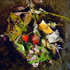Compost-10_edited.jpg
