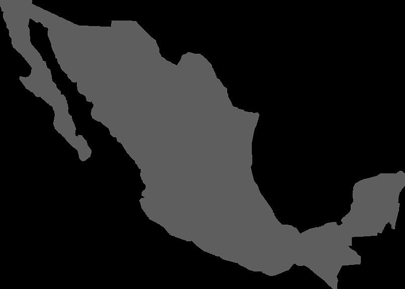 Mapa aduanas Carrizales Von Ziegler