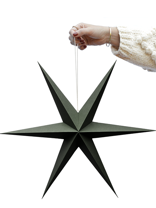 Stern Papier olive