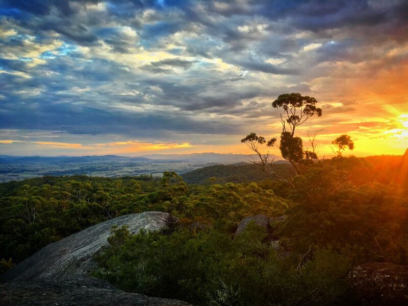Bald Rock National Park - Tentefield Shi