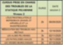 Calendrier cursus 2 RP 2020.JPG