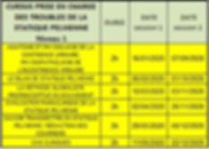 calendrier cursus RP1 2020.JPG