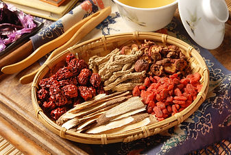 Different kind of Chinese herbal medicin