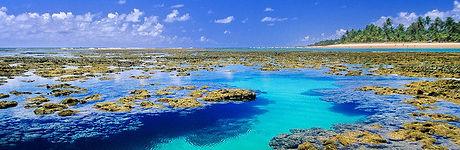 Taipu_de_Fora_Bahia.jpg