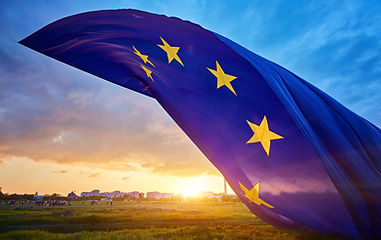 PHOTO2 DRAPEAU EUROPE.jpg