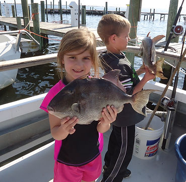 Young girl caught giant trigger fish while fishing on Aqua Venture Charters Charter fishin trip in Pensacola florida