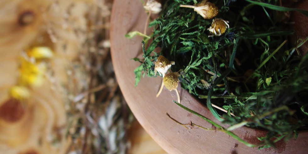 Foraging course