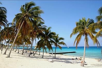 Santa Maria Beach.png
